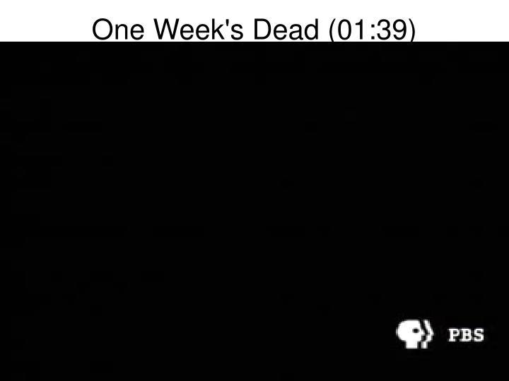 One Week's Dead (01:39)