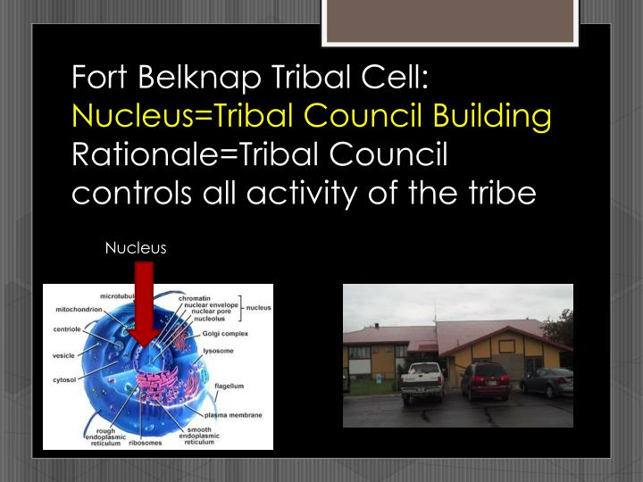 Fort Belknap Tribal Cell: