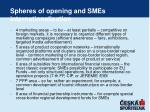 spheres of opening and smes internationalisation1