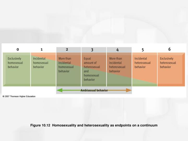 Figure 10.12  Homosexuality and heterosexuality as endpoints on a continuum