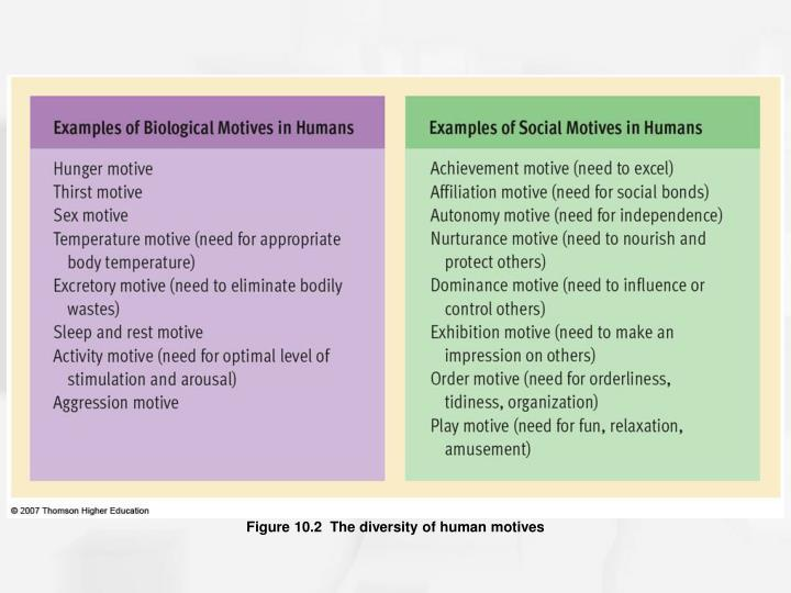 Figure 10.2  The diversity of human motives