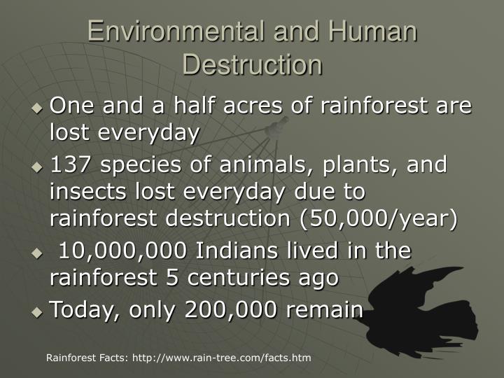 Environmental and Human Destruction