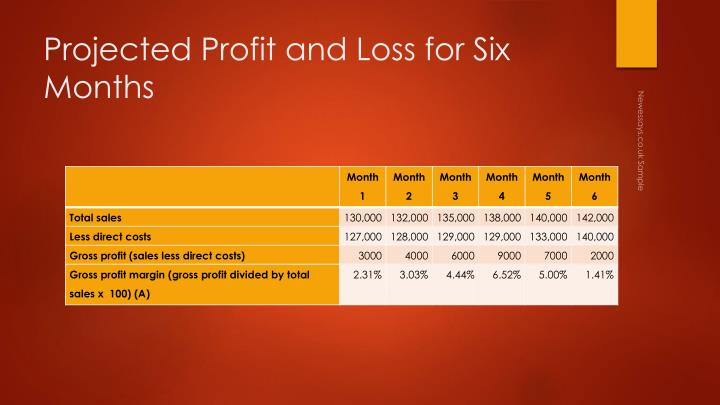 Projected Profit and Loss for Six Months
