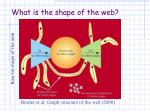 what is the shape of the web1