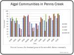 algal communities in penns creek