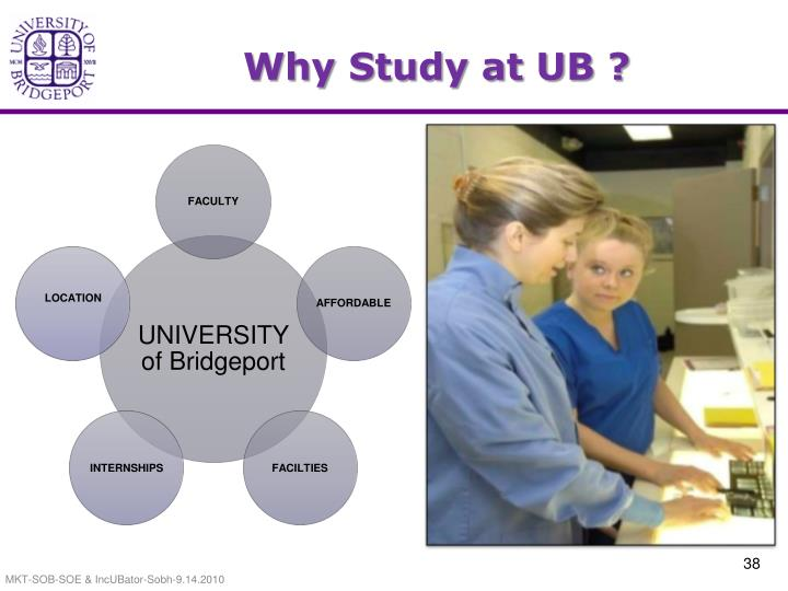 Why Study at UB ?