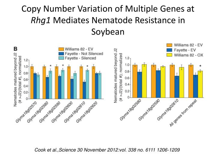 Copy Number Variation of Multiple Genes at