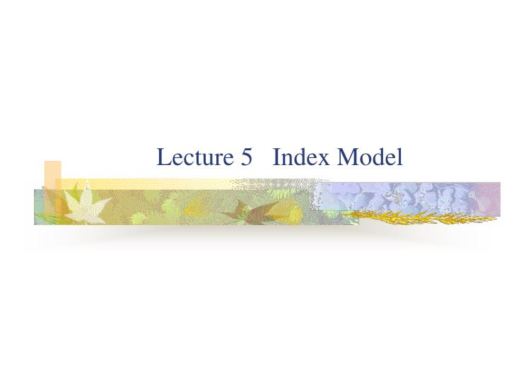 Lecture 5 index model