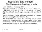 regulatory environment risk management guidelines in india