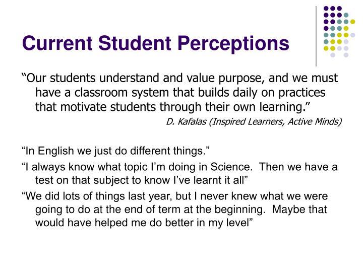 Current Student Perceptions