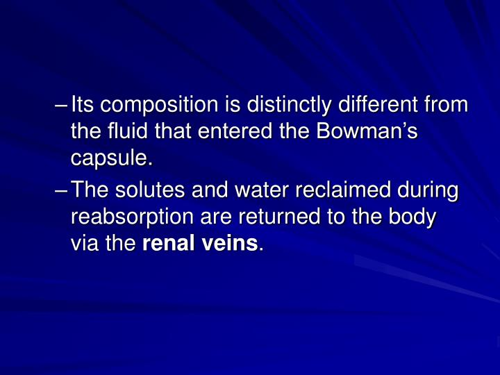Its composition is distinctly different from the fluid that entered the Bowman's capsule.