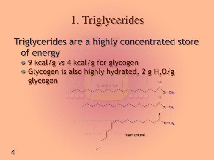 1. Triglycerides