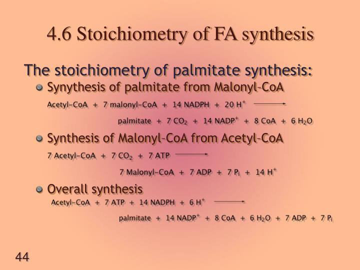4.6 Stoichiometry of FA synthesis