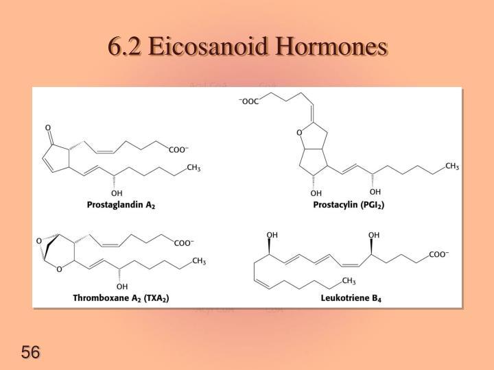 6.2 Eicosanoid Hormones