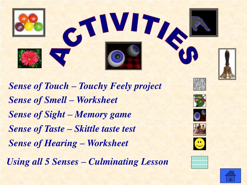 PPT - The Five Senses PowerPoint Presentation - ID:6408429