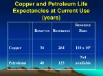 copper and petroleum life expectancies at current use years