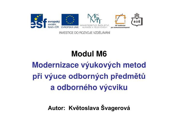 Modul M6