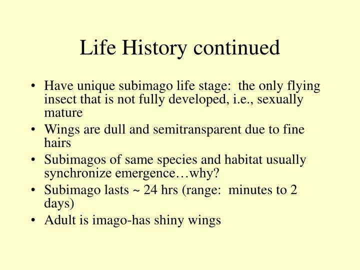 Life History continued