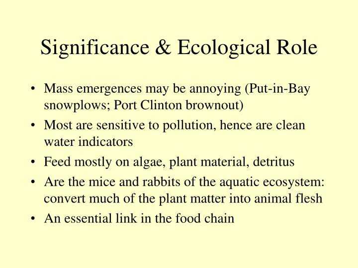 Significance & Ecological Role