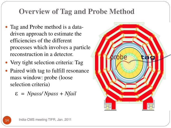 Overview of Tag and Probe Method