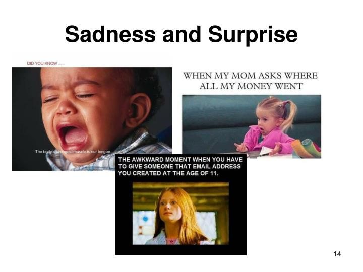 Sadness and Surprise