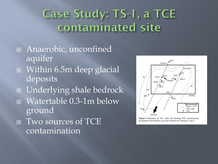 Case Study: TS-1, a TCE contaminated site