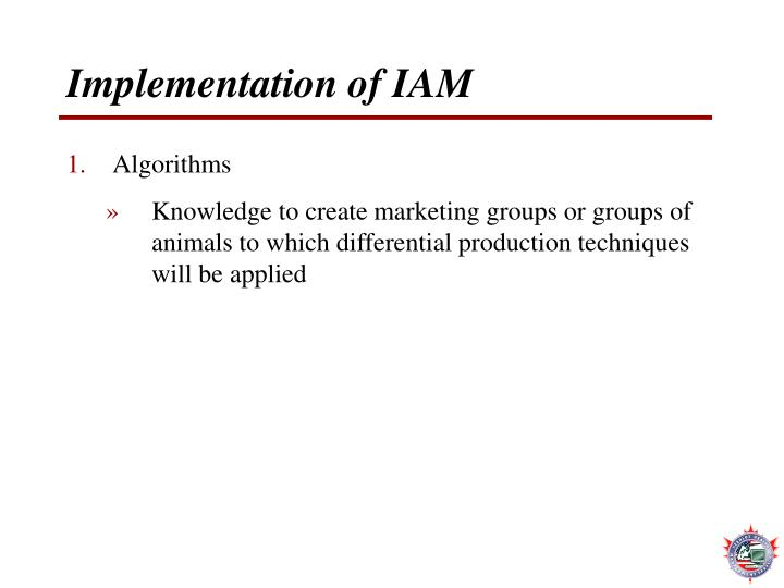 Implementation of IAM