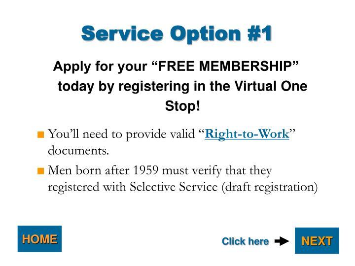 Service Option #1