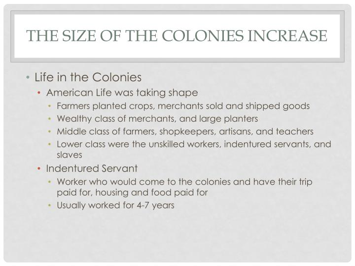 The Size of the Colonies Increase