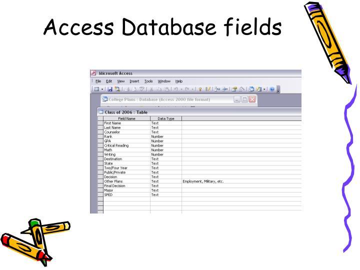 Access Database fields
