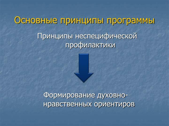 Основные принципы программы