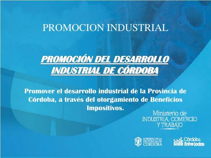 Promocion industrial