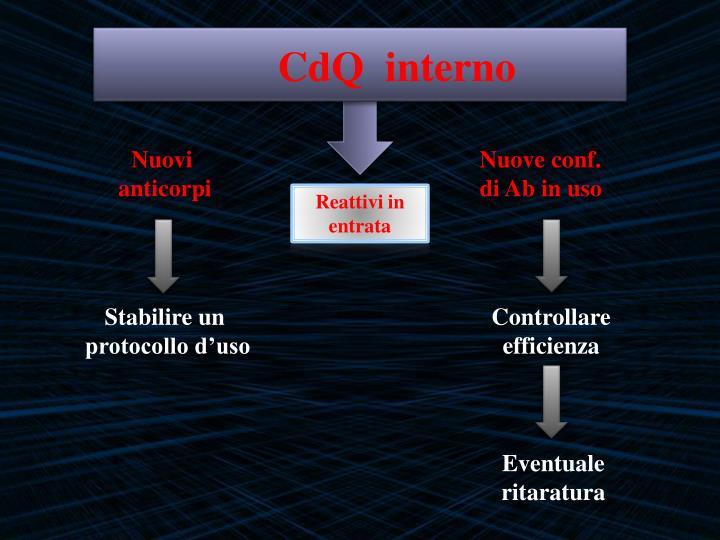 Cdq interno1