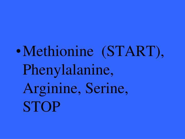 Methionine  (START), Phenylalanine, Arginine, Serine, STOP