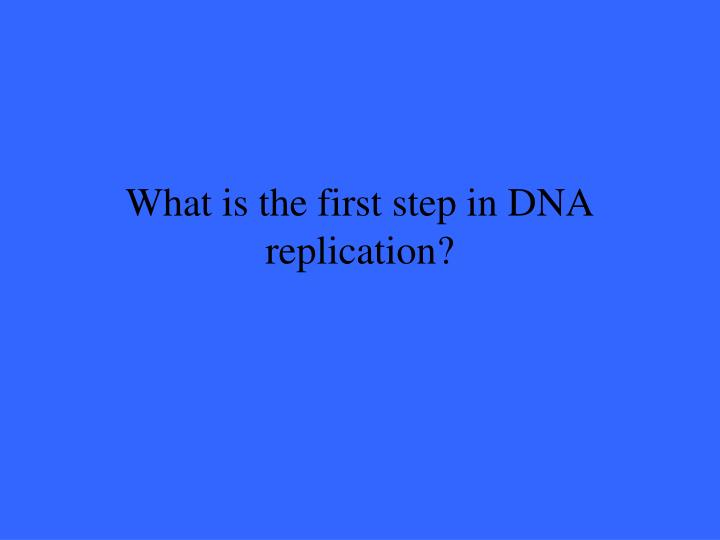 What is the first step in DNA replication?