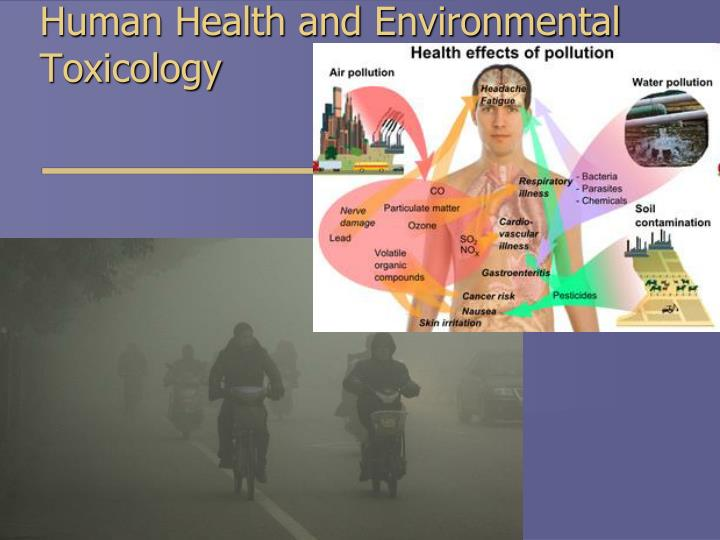 environment affects humans health Genes & your health how do your genes and the how do your genes and the environment interact are turned off when pollutants in the environment affect.