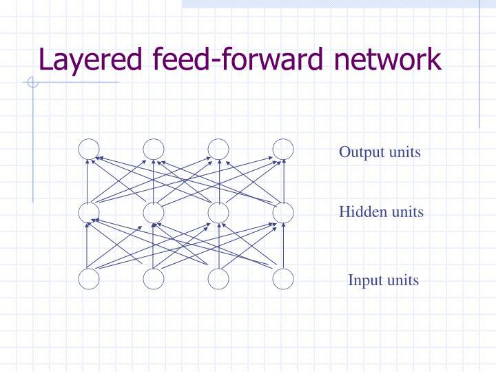 Layered feed-forward network
