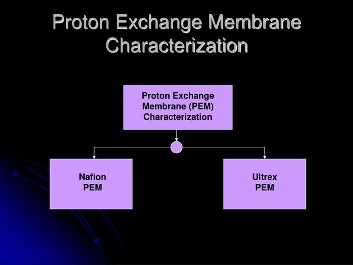 Proton Exchange Membrane Characterization