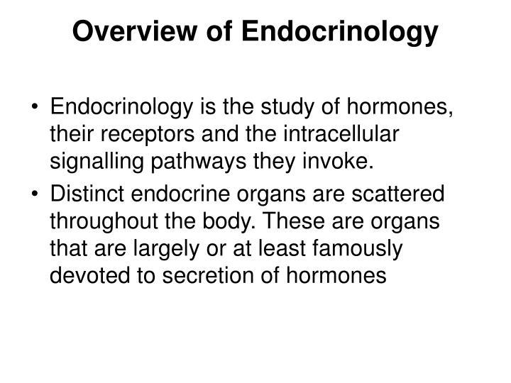 endocrine organ and hormones study guide