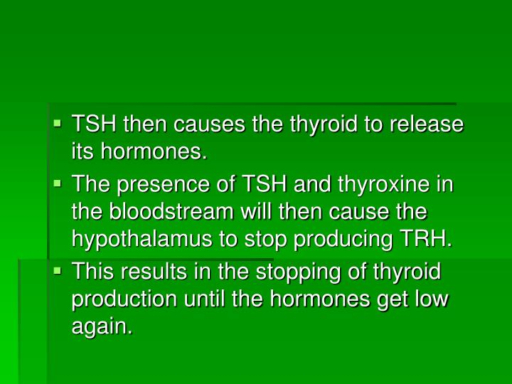 TSH then causes the thyroid to release its hormones.