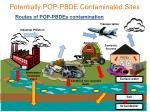 potentially pop pbde contaminated sites