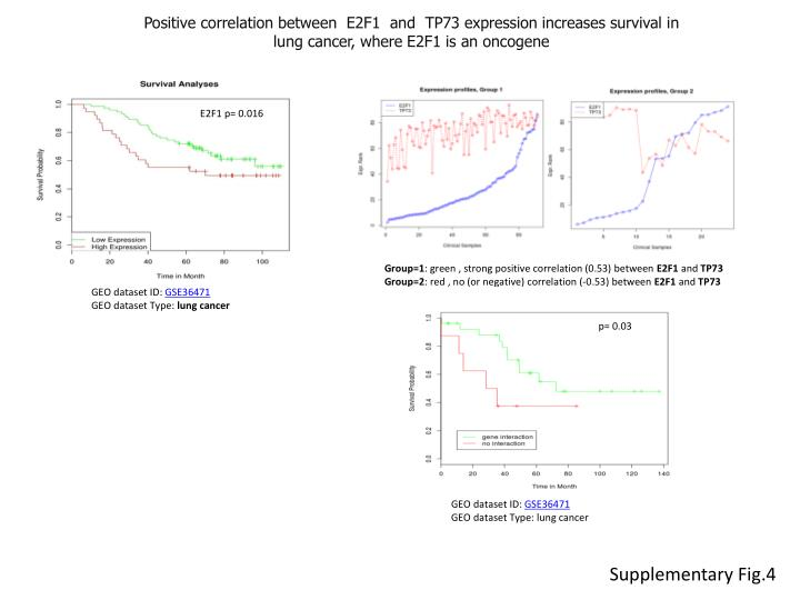 Positive correlation between E2F1 and TP73 expression increases survival in lung cancer, where E2F1 is an oncogene