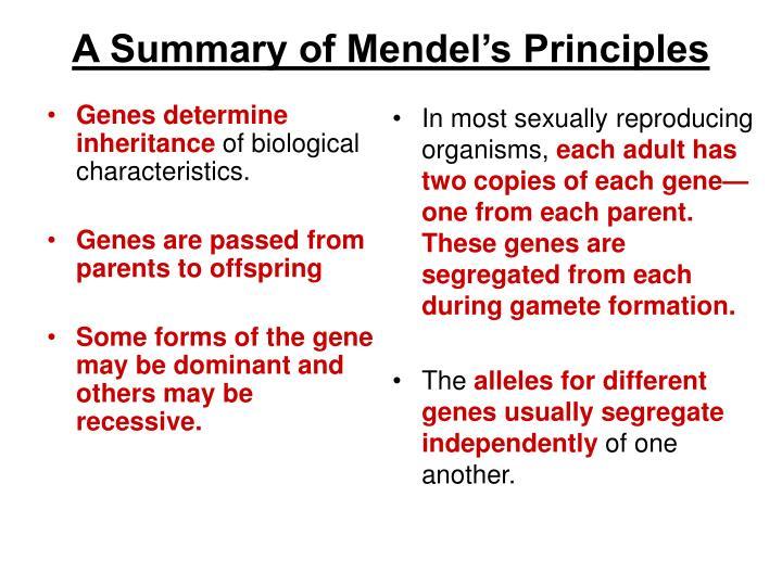 Genes determine inheritance