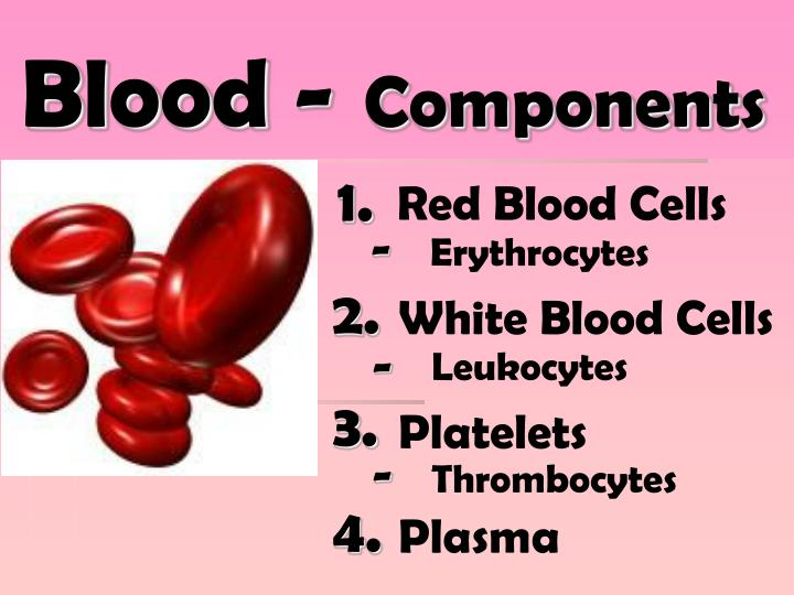 Blood -