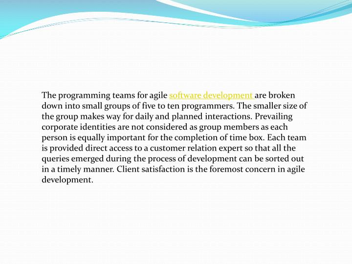The programming teams for agile
