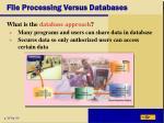 file processing versus databases1