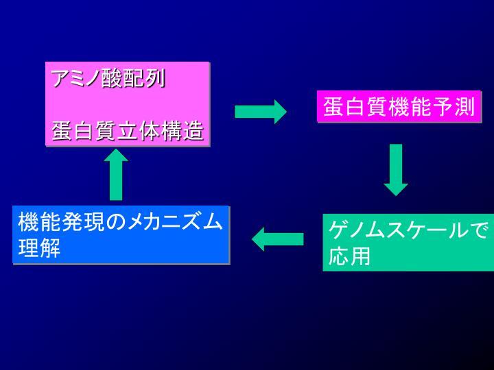 アミノ酸配列