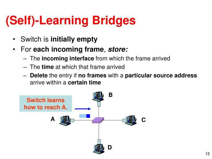 (Self)-Learning Bridges