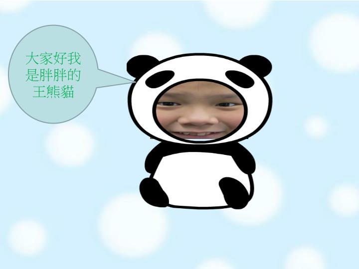 大家好我是胖胖的王熊貓