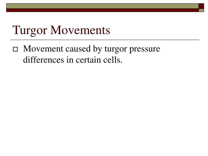 Turgor Movements